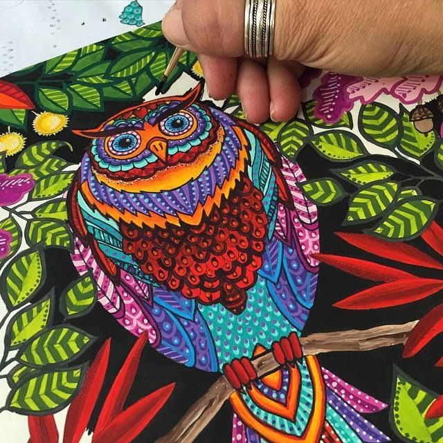 Instagram Analytics Secret Garden Coloring BookSecret