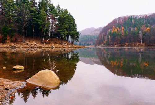 Lacul Firiza, Baia Mare    Foto: Maguran Atti    Surprising Romania - Impreuna promovam frumusetile Romaniei!