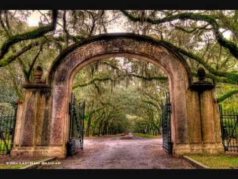Savannah Georgias Historic Wormsloe Plantation Oak Alley