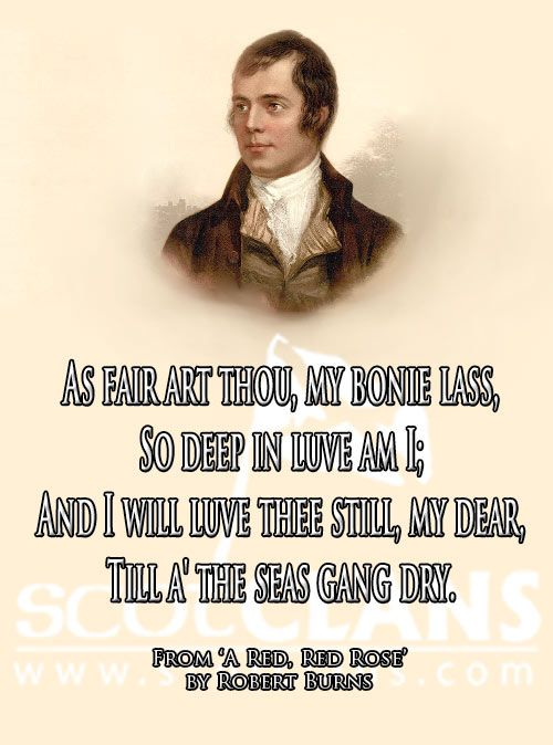 Red, Red Rose by Robert Burns, Scotland's National Poet
