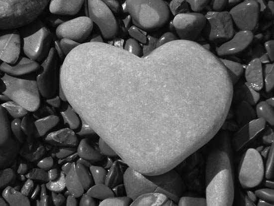 This heart of stone. | 24 Of The Most Literal Things Ever