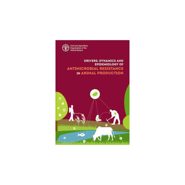 Drivers, Dynamics and Epidemiology of Antimicrobial Resistance in Animal Production (Paperback)
