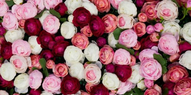 The Meaning of Every Rose Color - WomansDay.com