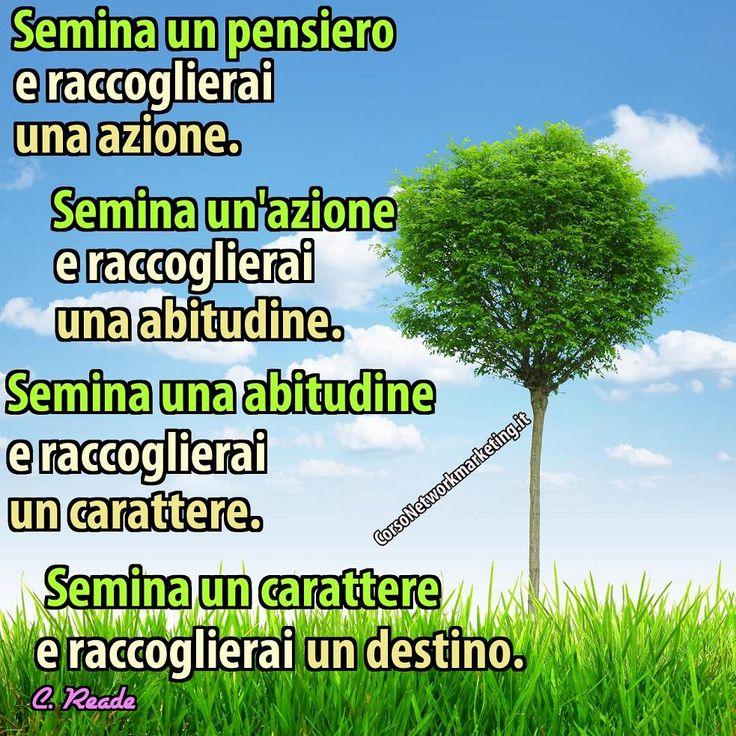 Aforismi sul pensiero - semina un pensiero.jpg (983×983)