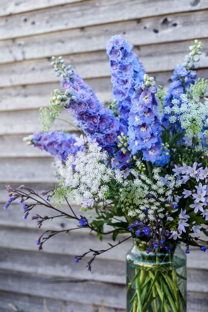 Like the shape and height of these, only concern is the shade, blue great, but not purple.