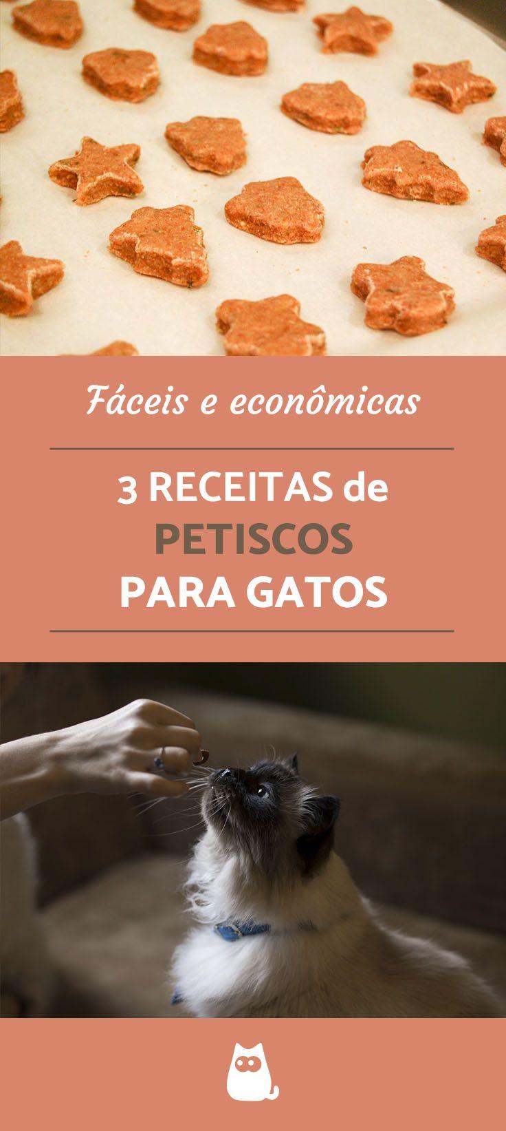Opções caseiras, práticas, econômicas e deliciosas que o seu gato vai amar! Confira as 4 receitas de petisco para gatos do PeritoAnimal!  #gatos #petisco #animais #pets #felinos #diy #guloseimas