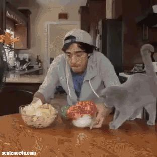 Zach King Magic This is amazing | This is amazing