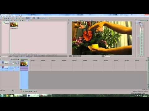 How to reverse video clips in Sony Vegas Pro