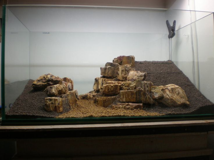"""We love to see the evolution of a scape.  This one is called """"My West Bank"""", 223l by a fellow named Vis The scape uses petrified..."""