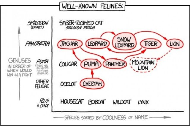 Well-known felines