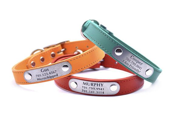 Leather Dog Collar with Personalized Nameplate  20 by LaserPets, $39.00 Henry and cornbread