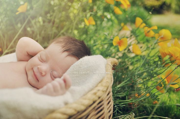 Newborn Portrait Outdoors, with Poppies (Camellia, meet Baby: Baby Elizabeth's Summertime Debut! ~ Tacoma Newborn Photographer)