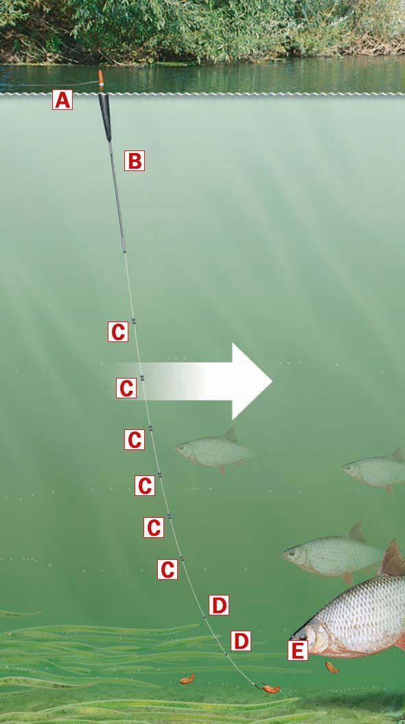 how to set up a fishing rig australia