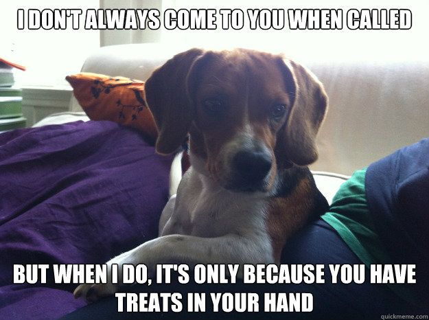 this is so our dogs, but since they can't have treats it is just when we have any type of food.