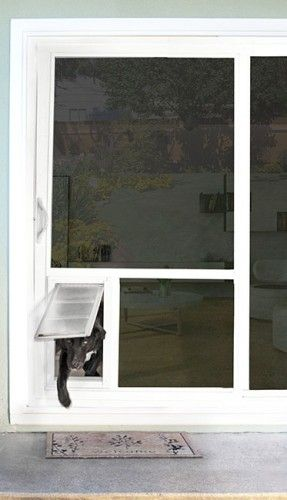 7 best dog flap images on pinterest pet flaps glass doors and a look at how the step over works for your dog with this non electronic pet doorglass planetlyrics Choice Image
