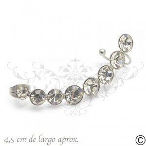 ERT_1067, aros, acero, circón, fiesta, accesorios, moda, joya
