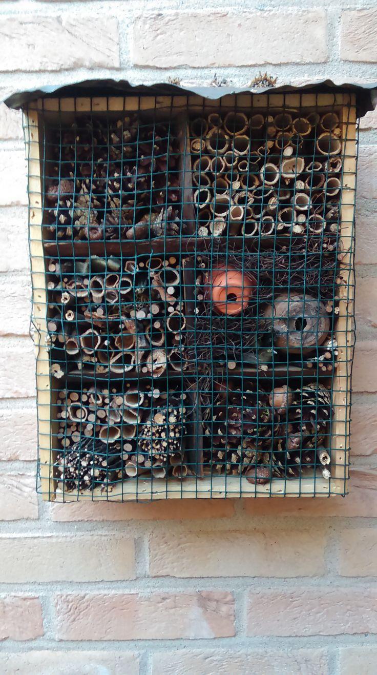 Een mini-insectenhotel in een wijnkistje