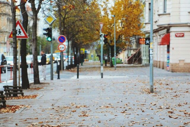 """Autumn in Prague. Or just simple czech name """"Listopad"""" and nothing else"""