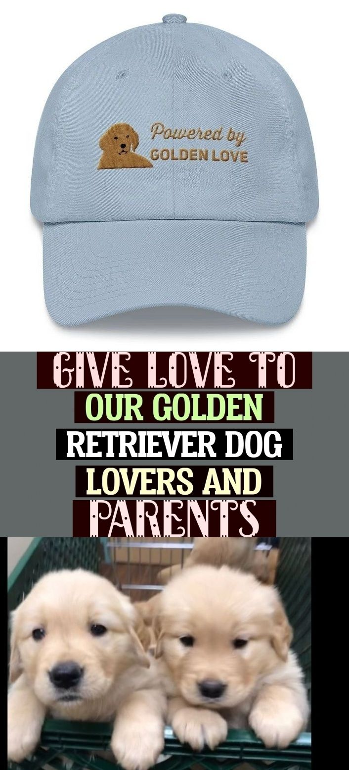 Give Love To Our Golden Retriever Dog Lovers And Parents With These Golden Retriever Gifts For Him Of A Golden Ret Puppy Gifts Golden Retriever Gifts Dog Gifts