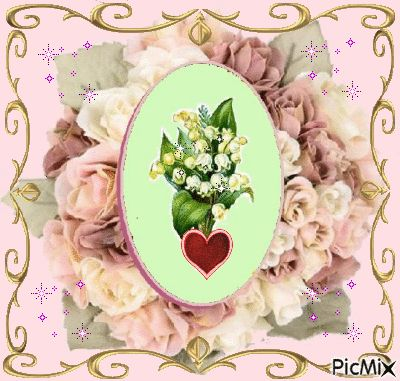 picmix.com_280506