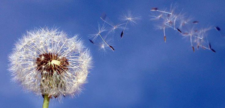 I nostri destratificatori evel sfruttano la leggerezza dell'aria