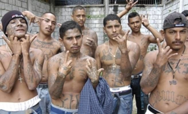 UN Backed MS-13 to Carry Out Assassinations of American Police Officers  If this is true and if the information is correct then we truly have an evil gov out to destroy the nation.