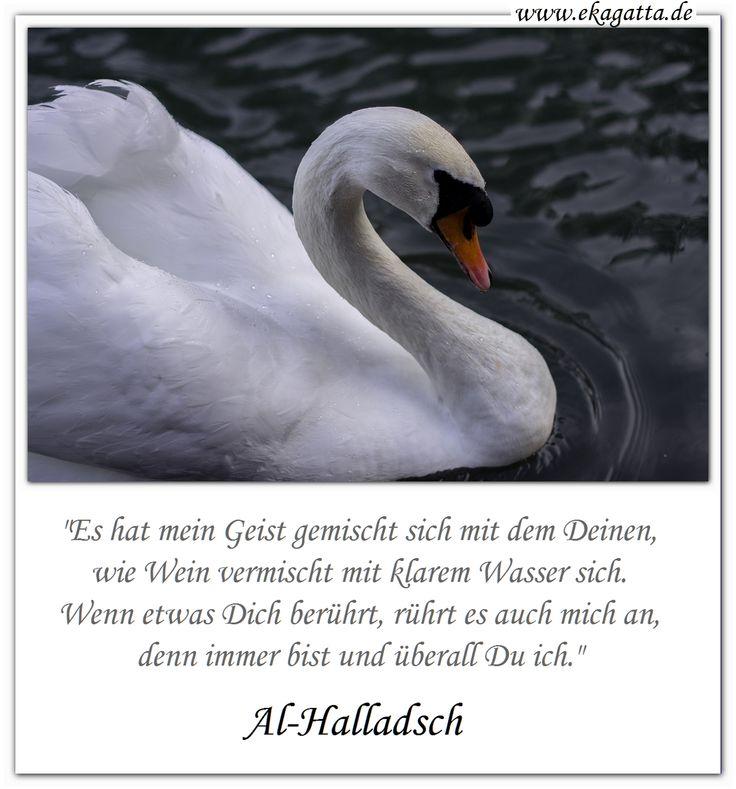 """""""Es hat mein Geist gemischt sich mit dem Deinen, wie Wein vermischt mit klarem Wasser sich.  Wenn etwas Dich berührt, rührt es auch mich an, denn immer bist und überall Du ich.""""  Al-Halladsch  (Textquelle: """"Sufismus: Eine Einführung in die islamische Mystik."""" von Annemarie Schimmel. C.H. Beck Verlag. Seite 33). * Sufismus * Zitate * Weisheiten * www.ekagatta.de *"""