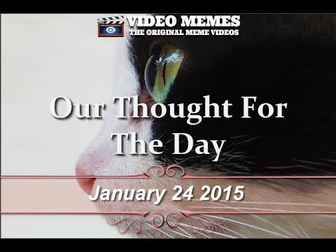 Social Video Memes | Social Video Marketing | Thoughts Of The Day
