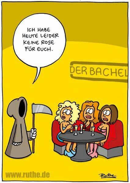 Bachelor-Rose... :o)