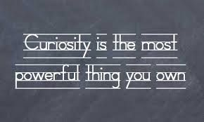 curiosity quotes - Google Search