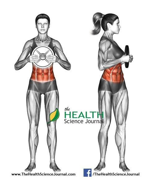 © Sasham | Dreamstime.com - Exercising for Fitness. Oblique Twist with Weight Plate. Female