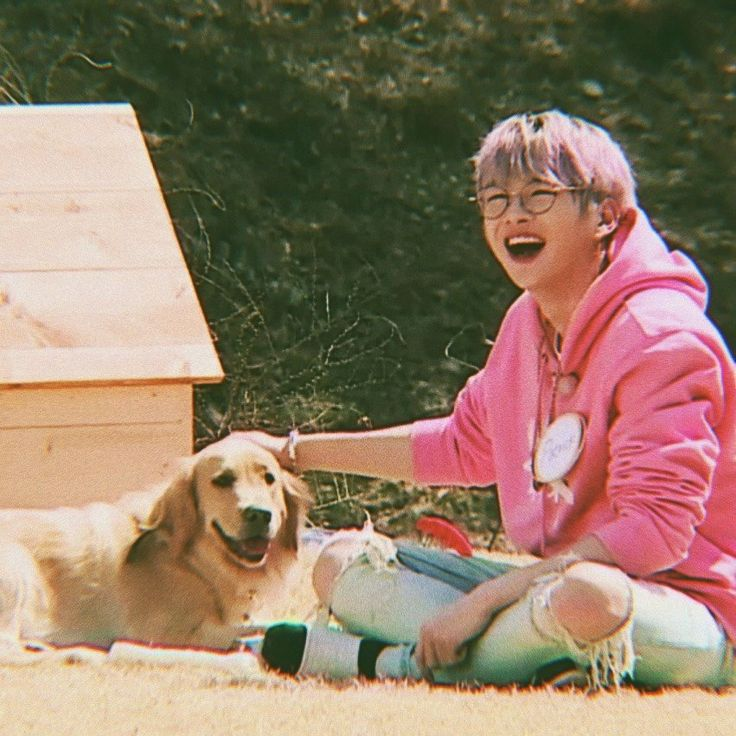Kang Daniel proves his big love towards animals + fans' hearts are fluttering because of what he did to this dog!