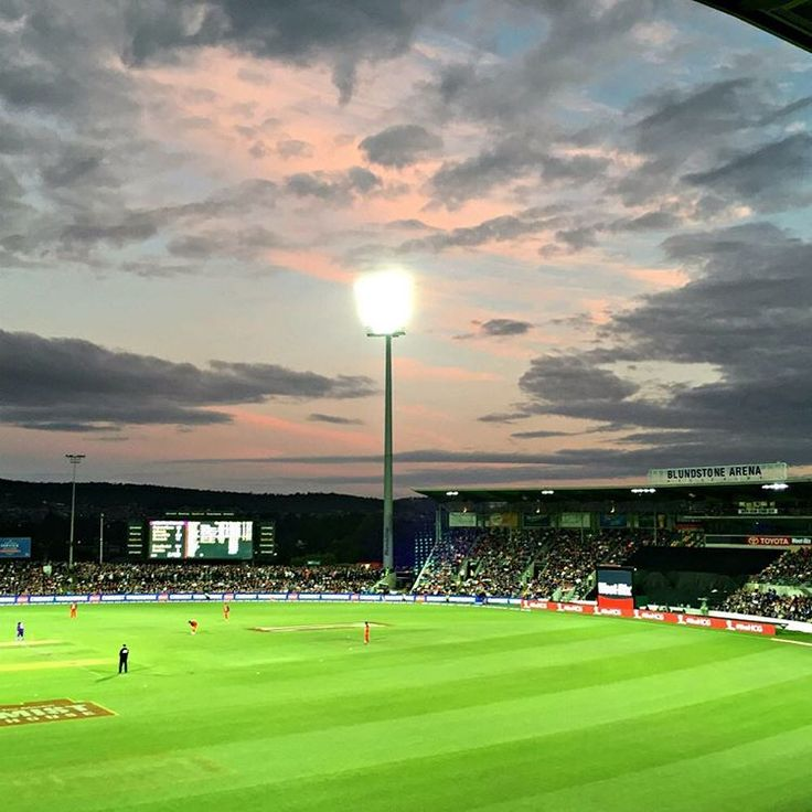 Hobart Hurricanes at Blundstone Arena, Bellerive ~ article and photo for think-tasmania.com ~  #Tasmania #Hobart #cricket #sport #BBL #Bellerive