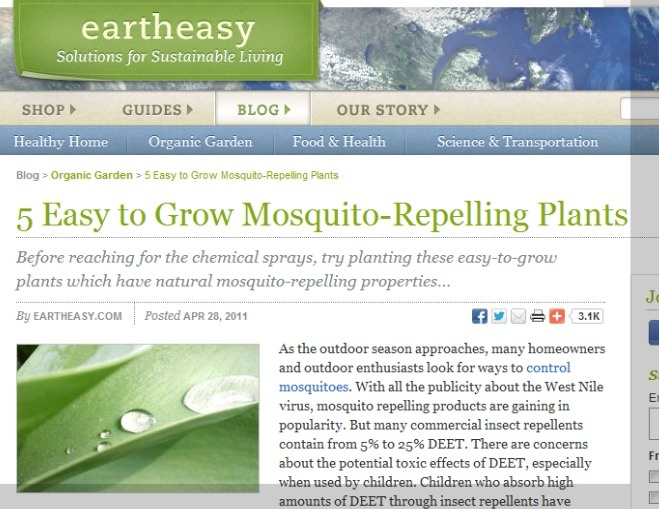 5 Easy to Grow Mosquito-Repelling Plants    eartheasy.com