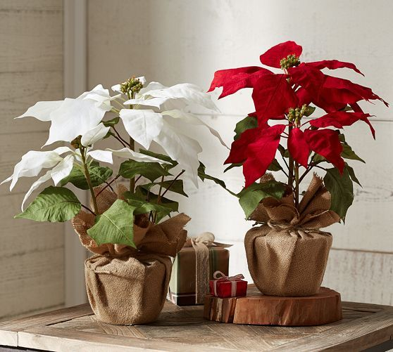 Faux Potted Poinsetta | Pottery Barn, red or white, $39.50.