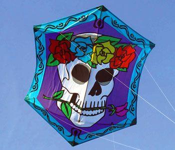 -Rokkaku Kites by Premier at WindPower Sports Kite Store