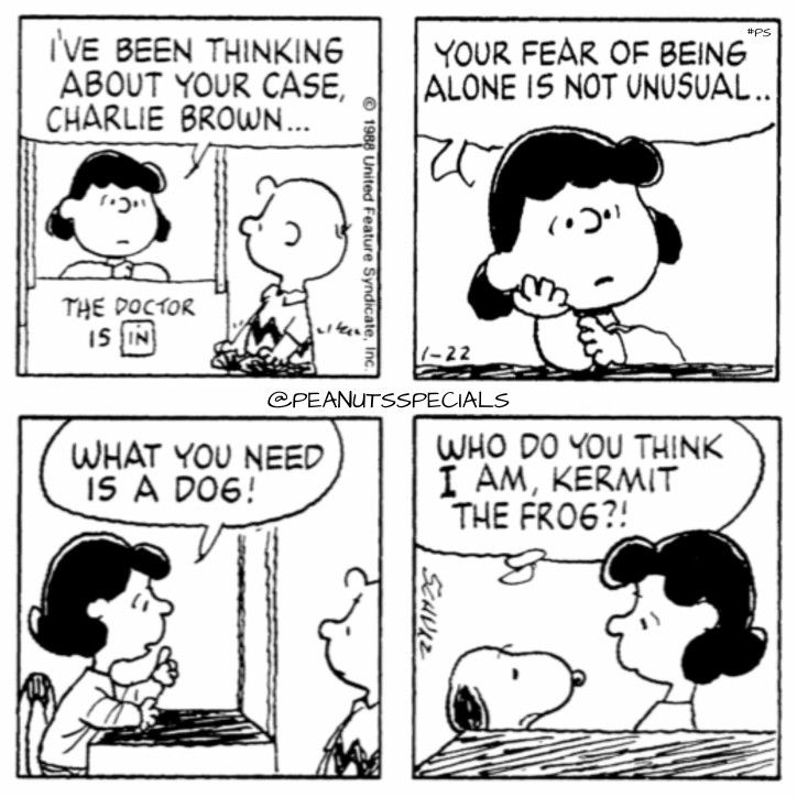 Charlie Brown needs Snoopy, not  Kermit. :D