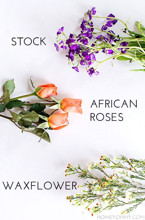 DIY Mini Flower Bouquets - | Africans, Rose and Flower