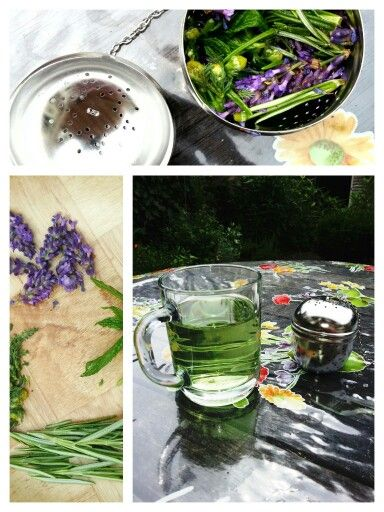 THEE TEGEN HOOFDPIJN Ingrediënten: - Lavendel - Rozemarijn - Munt - Kamille Deze thee neemt op een natuurlijke manier je hoofdpijn weg en is daarnaast heerlijk fris. Bereiding:  Kook wat water. Neem een mespunt lavendel, rozemarijn, munt en kamille. Doe dit mengsel in een thee-ei. Laat het mengsel zo'n 5 minuten trekken in heet water. De thee krijgt een prachtig groene kleur. Tip! Doe wat suiker of honing in de thee. Door de suiker neemt je lichaam de thee iets sneller op en het is lekker.