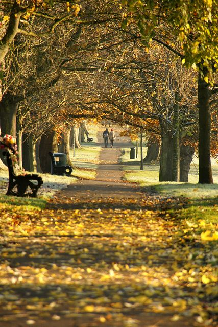 hand in hand - autumn in Victoria Park, Bath, England