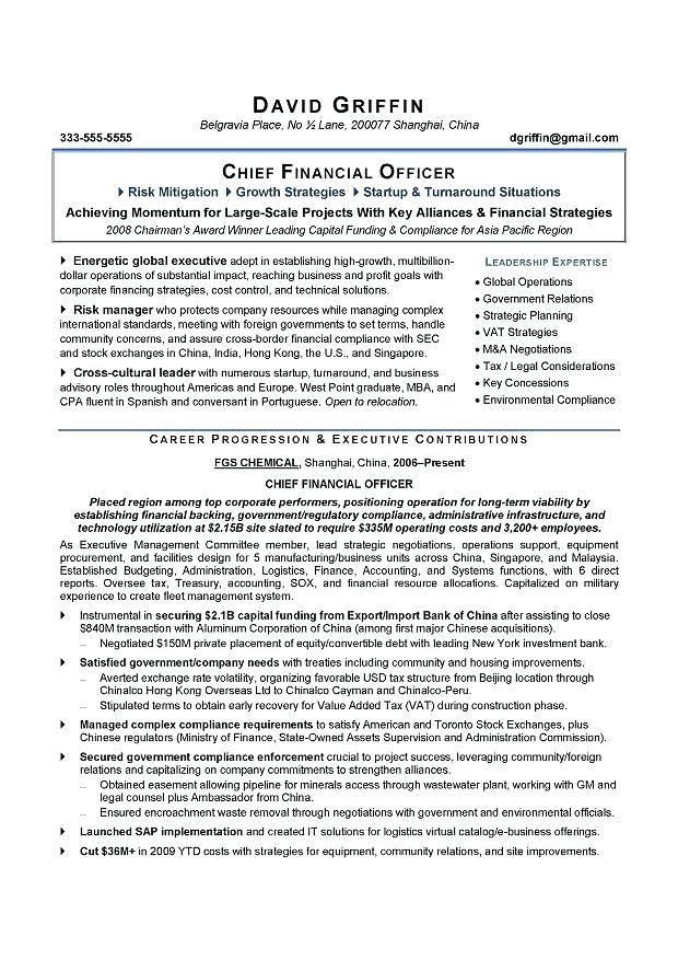 Example For A Resume Sample Resume Chief Financial Officer