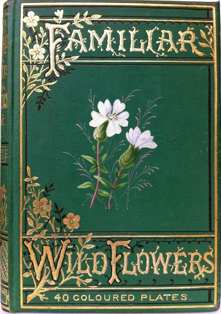 Familiar Wild Flowers by F. Edward Hulme, London, Paris & New York: Cassell and Company, Limited 1891-94 (5 vols) | Beautiful  Antique Books