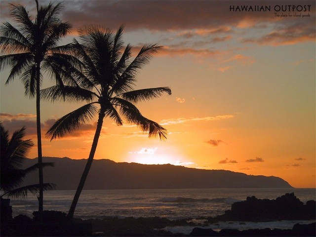 On my Bucket List: To watch a sunset on a beach in Hawaii.Buckets Lists, Favorite Places, Sunsets Beach, Beach Sunsets, Dreams, Hawaii Travel, Bing Image, Palms Trees, At The Beach