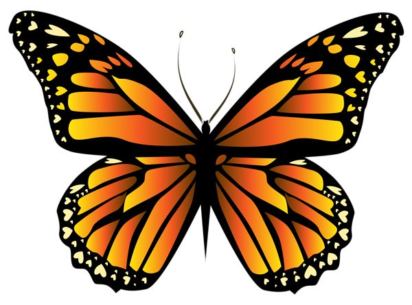 Orange Butterfly PNG Clipar