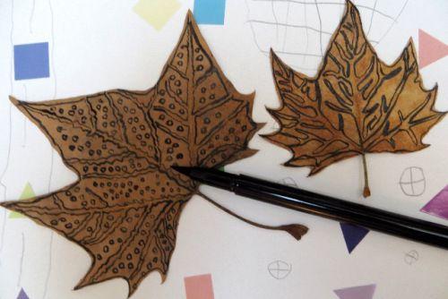 Dessiner sur une feuille d 39 automne activit s nature - Dessiner des feuilles d automne ...