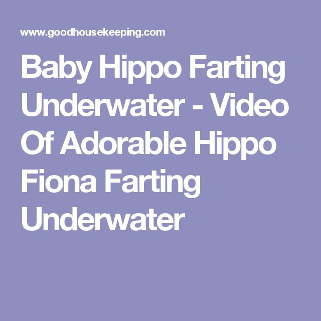 Fiona the baby hippo farting underwater is the best thing youll fiona the baby hippo farting underwater is the best thing youll see all day baby hippo underwater and creatures fandeluxe Choice Image