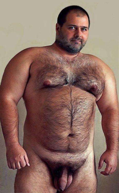 Daddy gay grizzly bear
