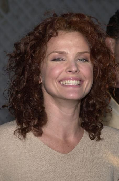 nude pictures of dina meyer
