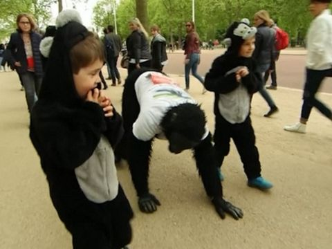Why did this guy run a marathon in a gorilla suit?