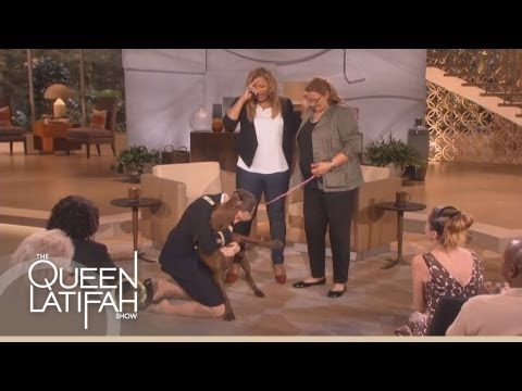 SO sweet!! --> Dogs on Deployment Reunites Soldier's Dog on the Queen Latifah Show - YouTube